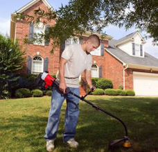 Edging, Landscape Maintenance in Chagrin Falls, OH